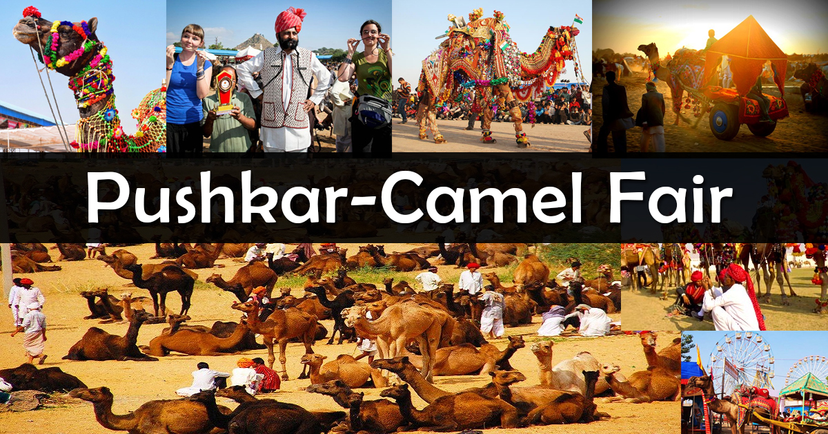 Pushkar: Best Places to visit in Rajasthan